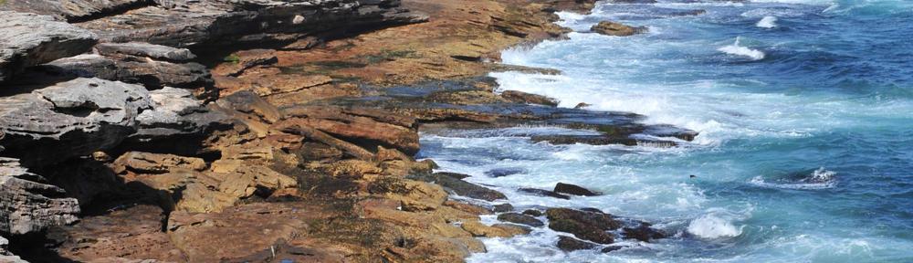 Coastal Living Realty